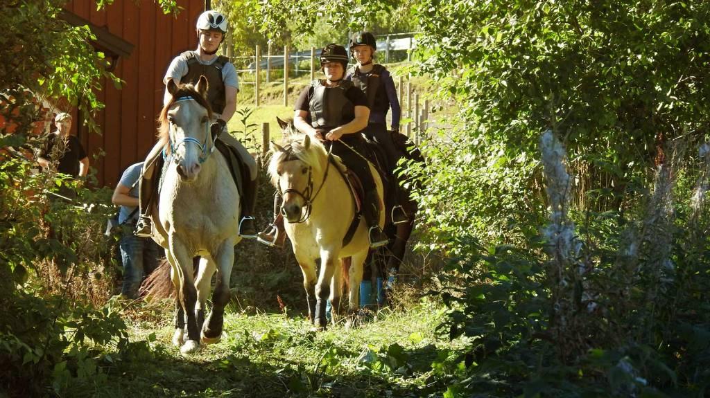 Ridetur i naturen som omgir folkehøgskolen vår.