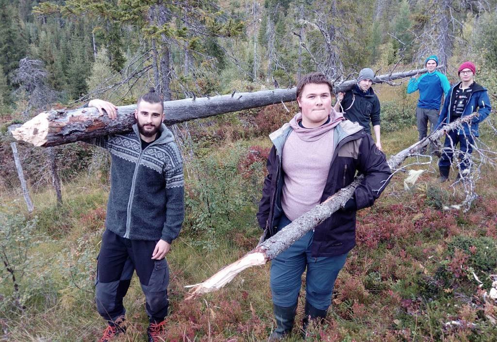 Elever som henter tømmer i skogen.