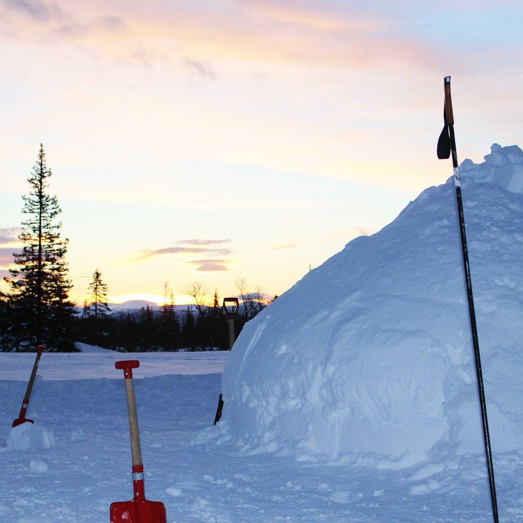 Snøhule laget av elever og lærere på Peder Morset Folkehøgskole.
